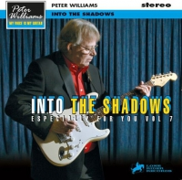 Especially for you Vol. 7 - Into The Shadows CD